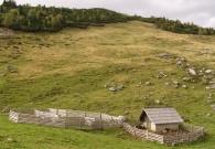 Planina Javorje