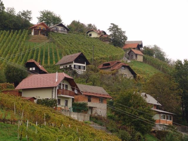 Zidanice in vinogradi
